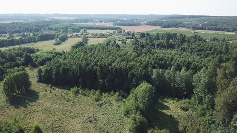 4k aerial with flight over mixed European forest at sunny day. 3840x2160, 30fps, drone view.
