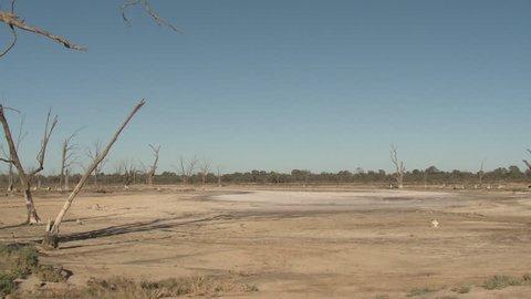 Lake Pond Kings Billabong Wildlife Reserve Dry Drought Lake Bed Mud in Australia