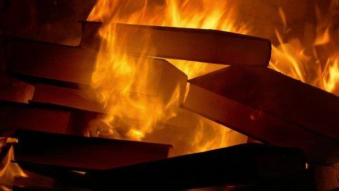 Book Burning - Censorship Concept 1