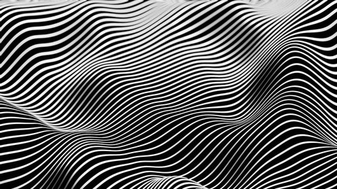 Morphing Diagonal Black and White Lines - Seamless Loop