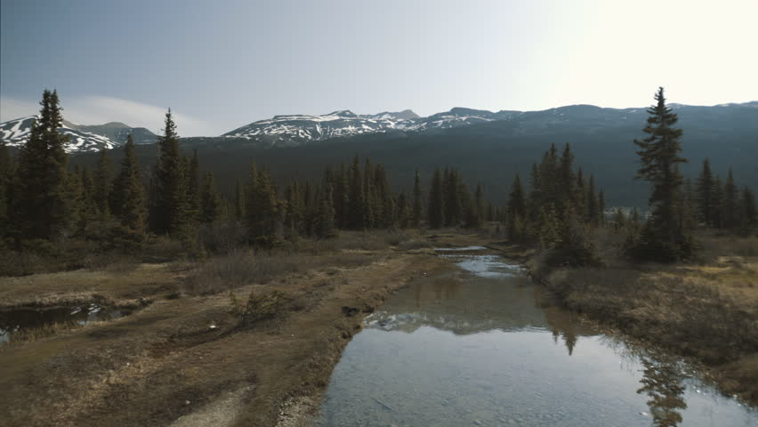 4K Calm Stream in Banff, Alberta surrounded by evergreens - mountains in background - dolly left,ing shot