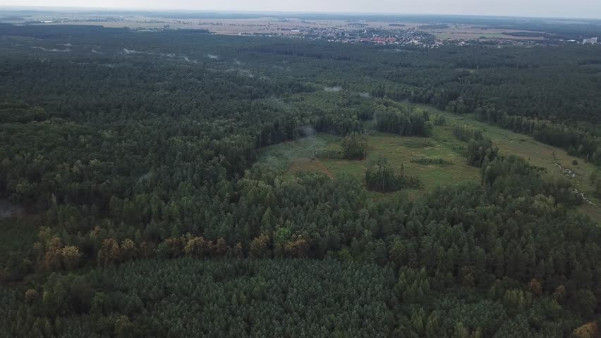 Aerial: 4k footage with flight over foggy forest. Polish landscape. 3840x2160, 30fps. | Shutterstock HD Video #1015207471