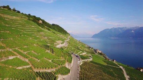 4K Aerial footage of Vineyard fields in Terrasses de Lavaux near Lausanne in Switzerland - UHD