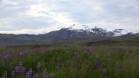 Driving on the Ring Road (through southern Iceland near Eyjafjallajokull)