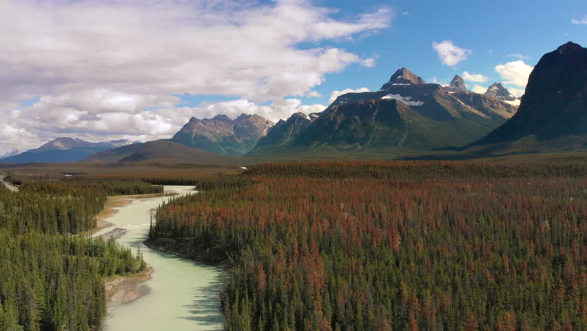 Aerial view of the Canadian Rockies, flying over lush pine tree forest and the Bow River at Banff National Park during summer in Alberta, Canada.