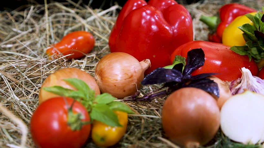 A combination of red and yellow pepper with green herbs. Vegetable set. Red, yellow peppers, tomatoes, onions, garlic on fresh hay