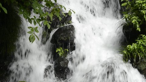 Close up white cascade falling among stones beside green plants in Kagoshima