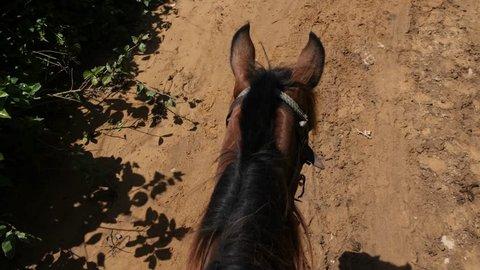 Cowboy Riding A Horse At A Ranch Vinales Cuba