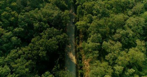 Passing through the Forest Park, UAV shooting