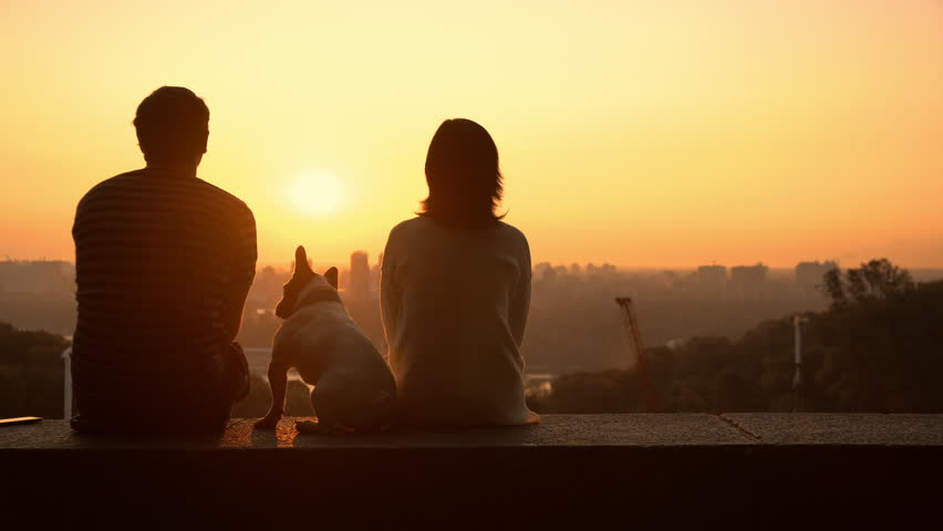 Man and woman at the observation deck. family pet sitting between them. | Shutterstock HD Video #1016537311