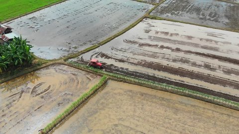 Beautiful aerial view of the birds following tractor plowing paddy field in Phitsanulok, Thailand.
