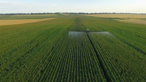 Aerial view of tractor spraying wheat field. 4K.
