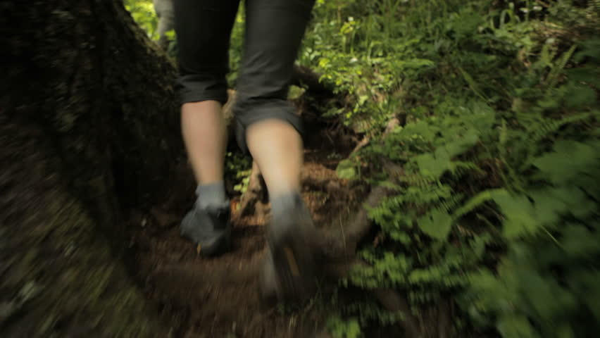 Low section handheld shot of hiking couple running amidst plants in woodland #1016888311
