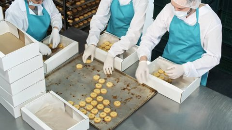 High angle view of three factory workers in protective clothing packing delicious freshly baked cookies into boxes before sending them to stores