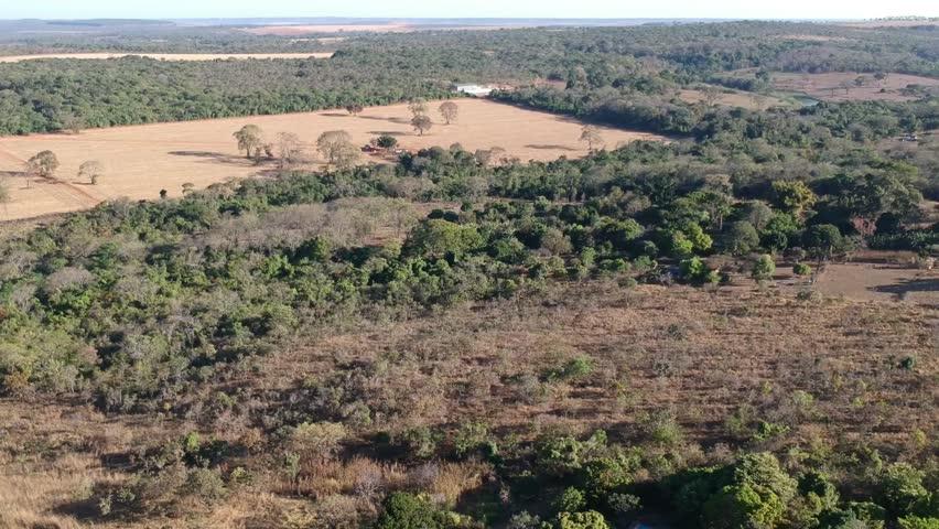 aerial images of the Brazilian cerrado