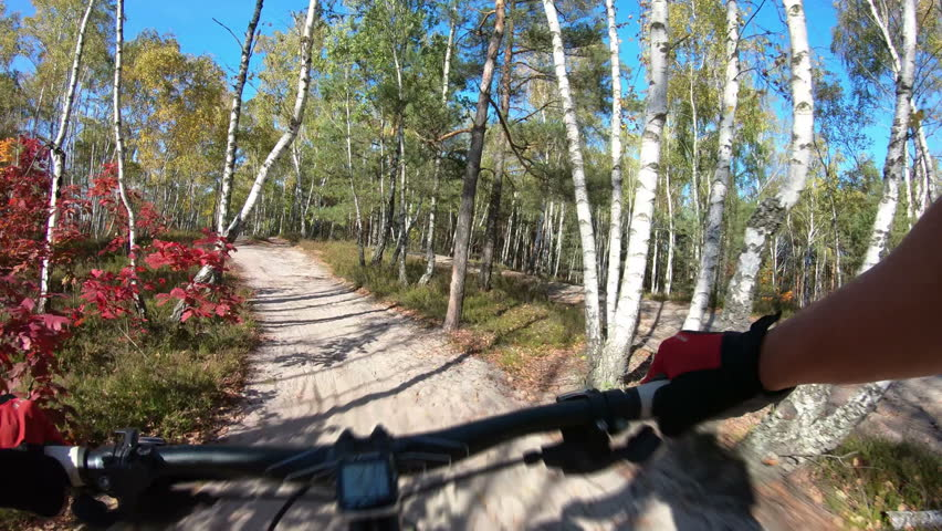 MTB bike riding on enduro track trail in autumn forest. Cross country mountain biking. Extreme speed cycling, first-person perspective view. Gimbal stabilized 4k. | Shutterstock HD Video #1018033501