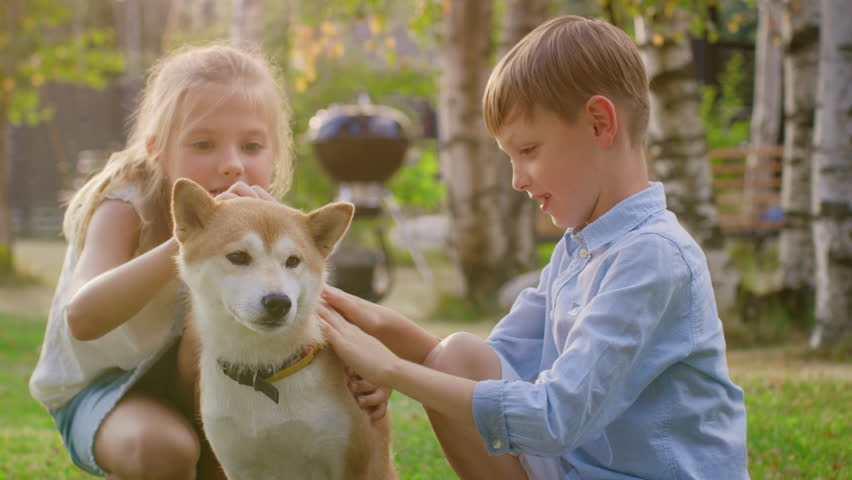 Little Boy and Girl Play with Cute Shibu Dog, Children Pet the Dog in the Backyard. Sunny Summer Day.