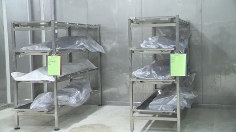 Soft bodies for dissection education of medical students in the freezer.