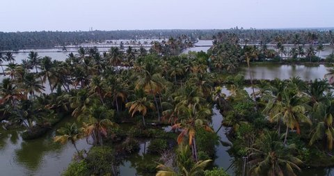 Drone footage of the Changaram Wetlands on the coast between Alappuzha and Kochi, Kerala, India, palm trees are bordering plots of flooded areas
