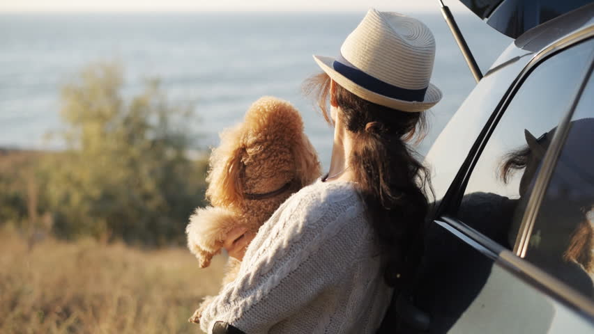 Woman traveler with dog is enjoying beautiful sunset on sea during road trip . | Shutterstock HD Video #1018178851