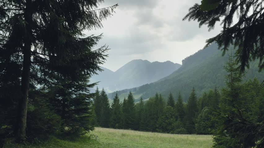 Monumental Slovakia canyon in rainy weather. Peaks of mountains in fog, in distance. Mountain slope with forest, mountains, meadows and pastures. Excursional destination for hiking, vacation. Day shot | Shutterstock HD Video #1019056501