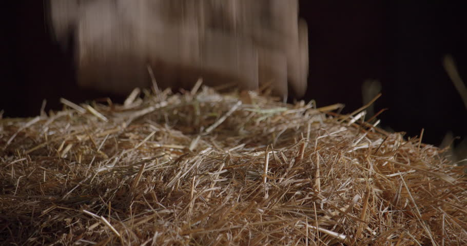 Gloves dropping on a haystack / Slow motion 5 | Shutterstock HD Video #1019161201