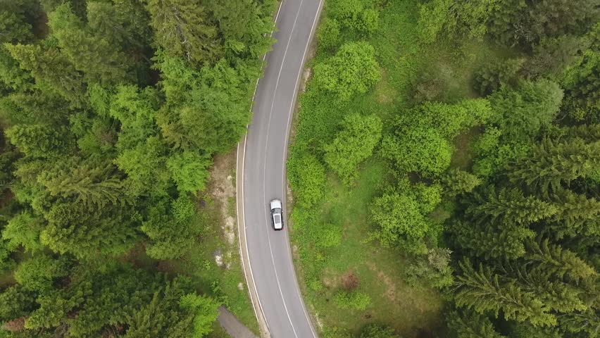 Aerial view flying above forest road. Cinematic drone view. Car driving trough the forest.  #1020265711