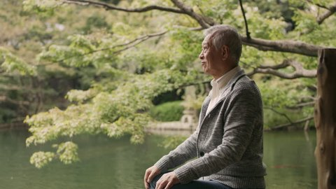 Thoughtful old man sitting near a pond in a  vibrant, beautiful garden with soft natural lighting. Medium to close up shot on 4k RED camera.
