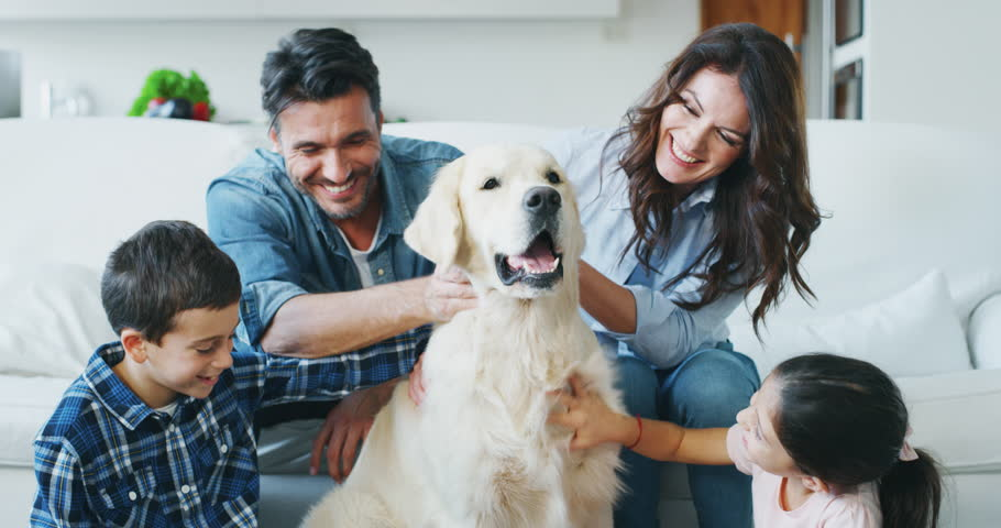Portrait of happy family cuddling their dog having fun together in living room in slow motion. Shot with RED camera in 8K. Concept of happy family, parenthood, love for animals | Shutterstock HD Video #1020812041