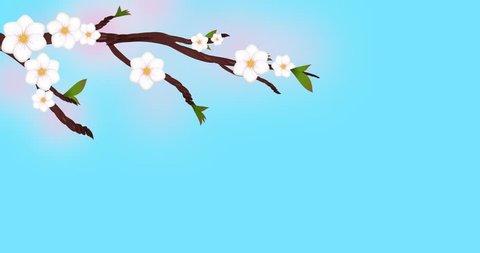 Peach, blooming, Bloom, Flower, Branch, tree, Cherry, Sakura tree Blossoms, Peach blossoms, Cherry blossoms, Spring Blossoms, plum flowers dissolve,size 4k,Japan