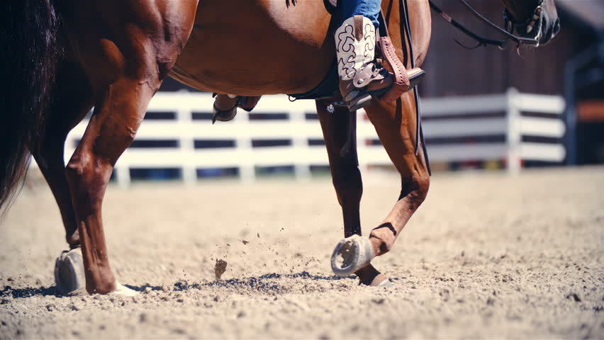 Riding horse in jogging pace slow motion HD. Long shot of horse lower part of the body in focus while riding in the arena. Riders cowboy boots in the stirrup. | Shutterstock HD Video #1021379551