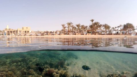 Underwater surface split in the tropics paradise with fish and coral reef, above waterline view of paradise beach with parasols. Egypt Marsa Alam vacation concept. split screen under and above water