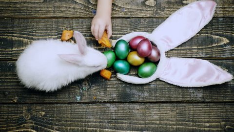 Easter eggs on wooden background. Close up of a boy's hand that feed hare with carrot on a wooden table with Easter eggs. Happy Easter spring time. Rabbit with eggs on wooden background