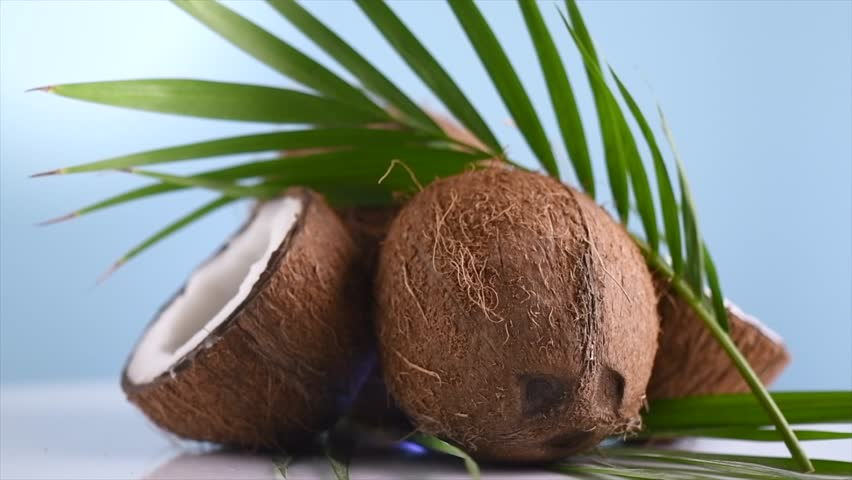 Coconut. Whole and half coco nut rotated on blue background. Fresh healthy coconut closeup. Exotic fruit. Milk or oil, cooking ingredient. 4K UHD video, slow motion