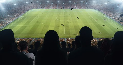 Fans celebrating the success of their favorite sports team, a man screaming in a megaphone on the stands of the professional stadium. Stadium is made in 3D and animated.