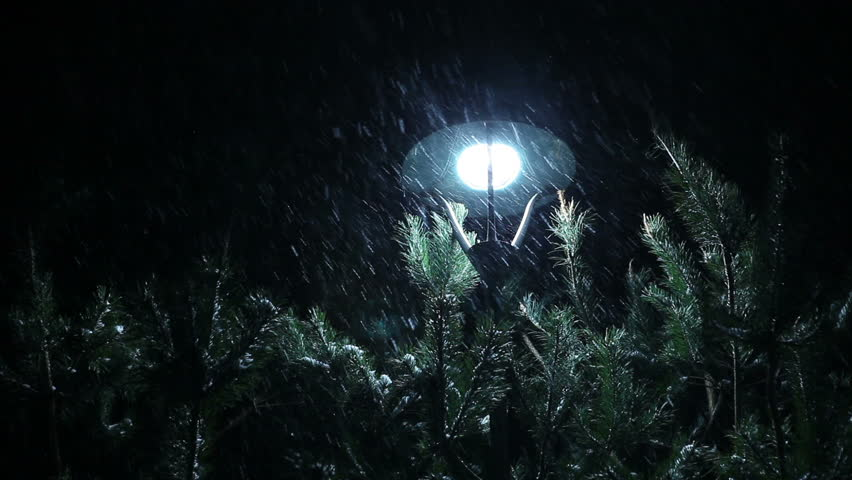 Snow falls on spruce late in the evening in the city park.  | Shutterstock HD Video #1023008671