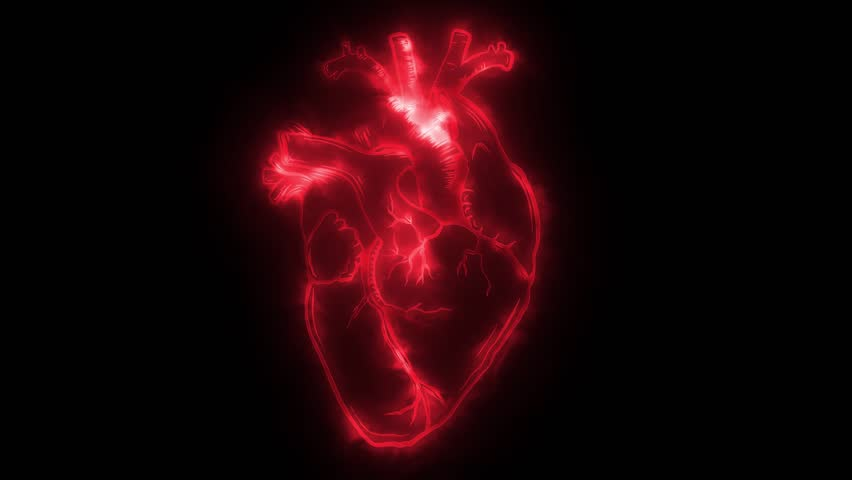 Animation of a heart that beats and lights up