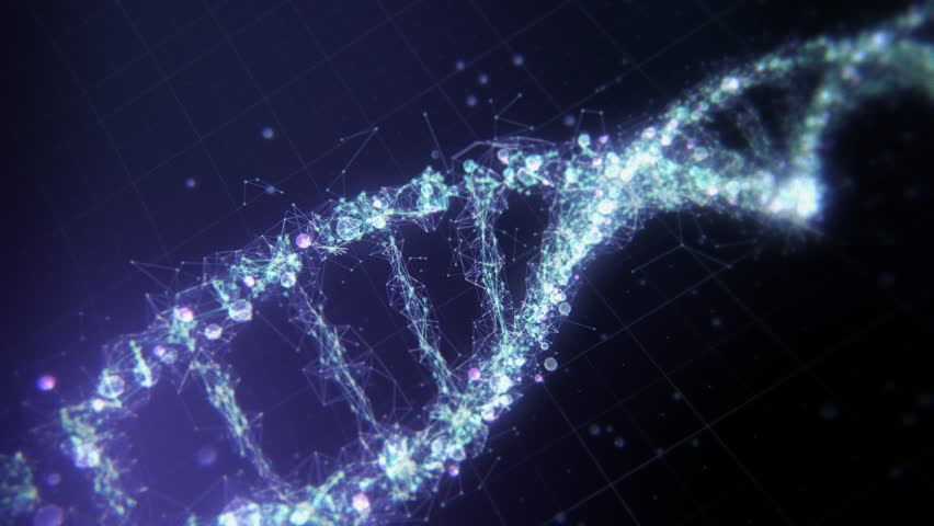 Abstract technological representation of digital plexus DNA molecule in blue. For biotechnology, chemistry, science, medicine and artificial intelligence. Seamless loop. Rotating DNA Strand | Shutterstock HD Video #1024634111