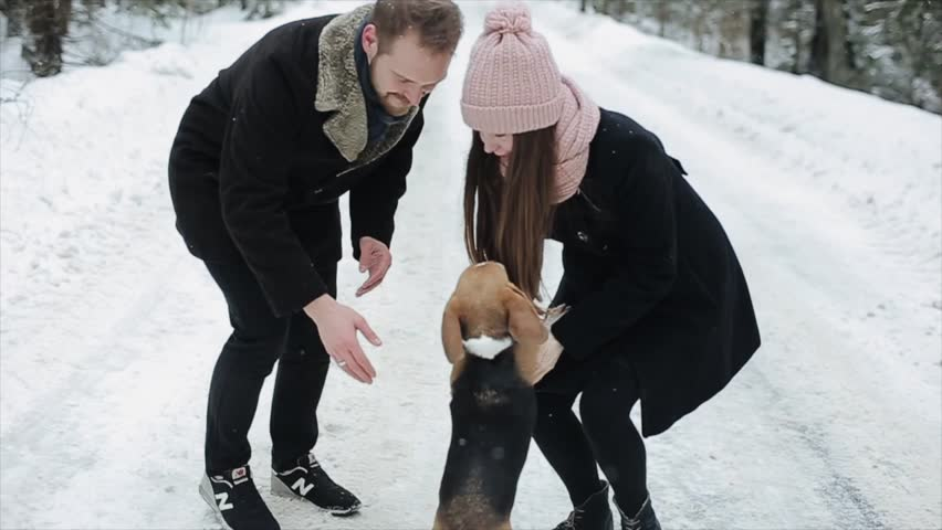 Cute young hipster couple having fun in winter park with their dog on a bright day and smiling. Man and woman playing with beagle. Slow motion, | Shutterstock HD Video #1025276921