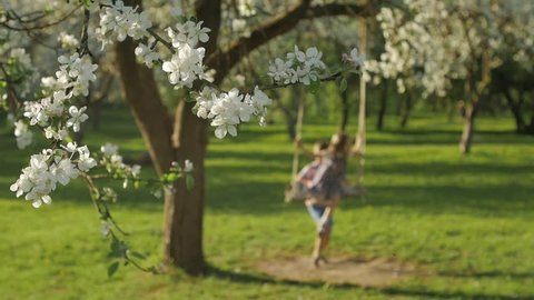 Two unrecognizable kids having fun on a swing in blossoming old apple tree garden outdoors on sunny spring day. Spring outdoor activities for kids.