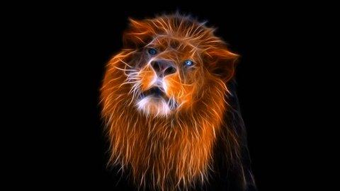 Lion Roaring, Fractal lion, lion attacks, lion's grin