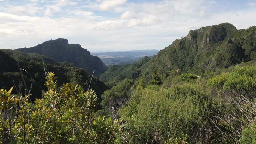 View over Coromandel Forest Park near Pinnacles summit near Thames in New Zealand #1025825411