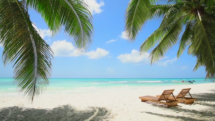 Small beautiful wild beach on paradise island Maldives. Beach chairs on blue sea on white sand. Boats on horizon / Dominican Republic Punta Cana. Isolated Tropical beach without people Heaven on earth | Shutterstock HD Video #1025831981