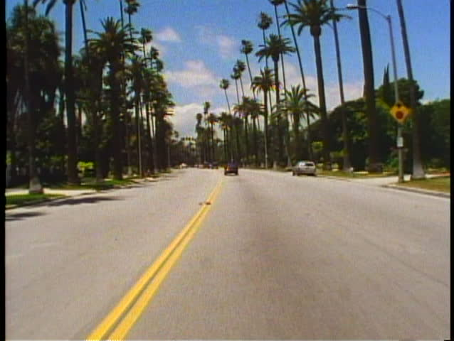 BEVERLY HILLS, CALIFORNIA, 1994, POV car driving down palm lined street | Shutterstock HD Video #1025883131