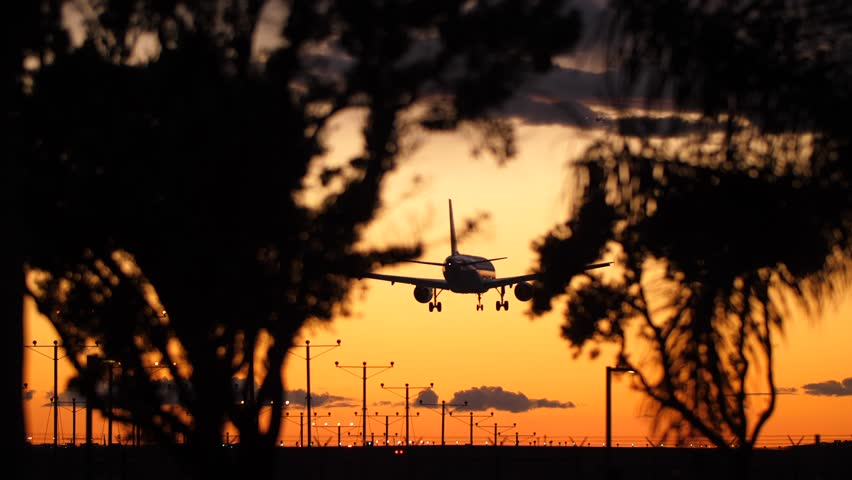 Plane landing seen through the trees and bushes | Shutterstock HD Video #1025914301