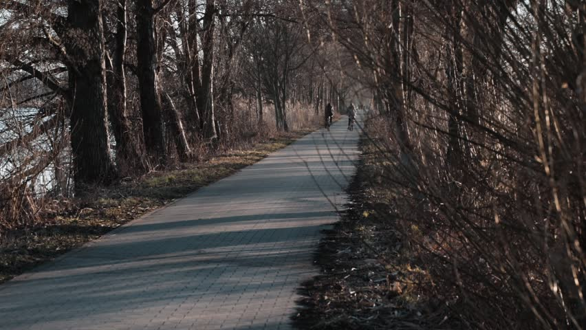 People riding bicycles on the alley between the ponds | Shutterstock HD Video #1025950811