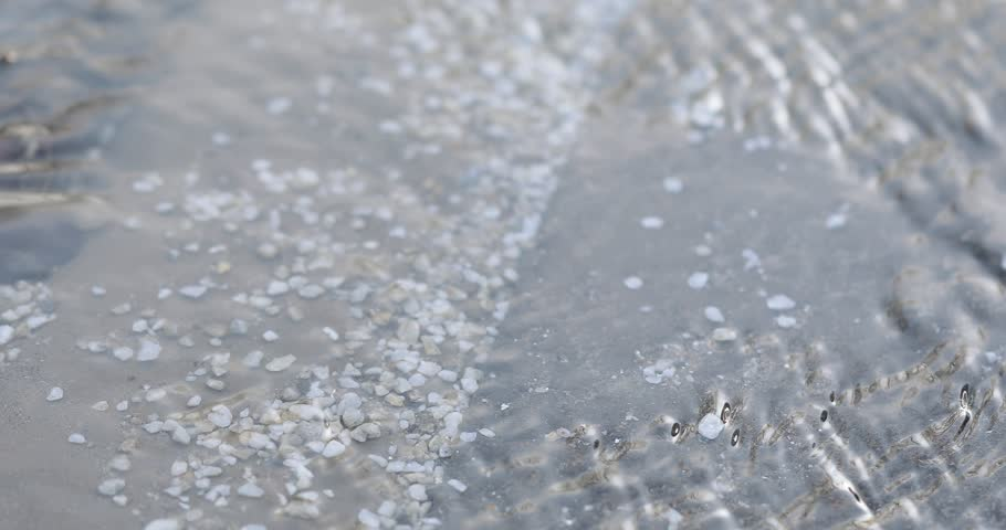 On the concrete slab are the remnants of reagents for cleaning from snow and ice | Shutterstock HD Video #1026432791