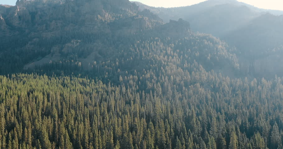 Aerial 4k drone shot flying above the pinewood forests of the Gallatin Mountain Range in rural Montana.