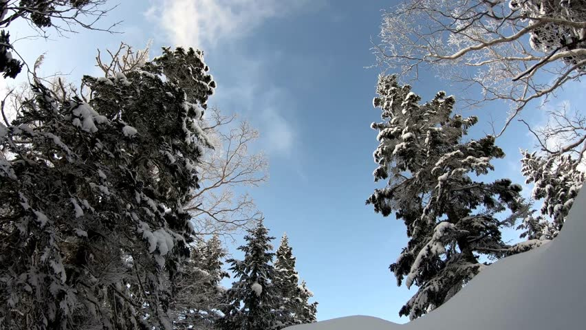 Time lapse snow in Japan | Shutterstock HD Video #1026588281