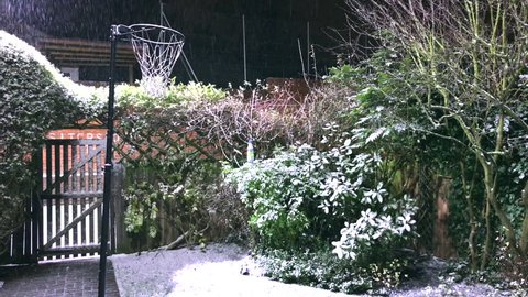 Snow falls past a Netball Hoop in an English Cottage Garden